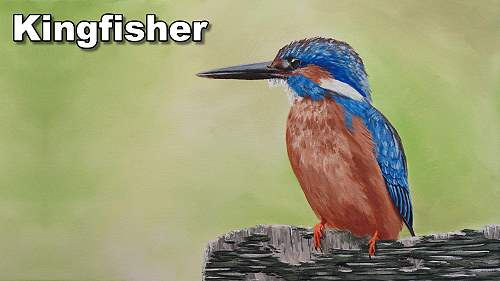 how to paint a kingfisher bird acrylic