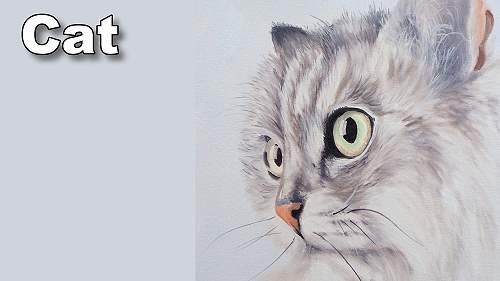 how to paint a cat in oil